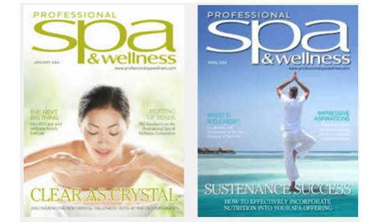 Professional Spa & Wellness
